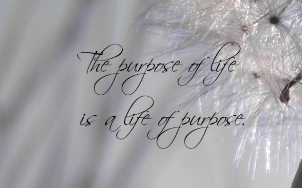 purpose-in-life-quotes-1